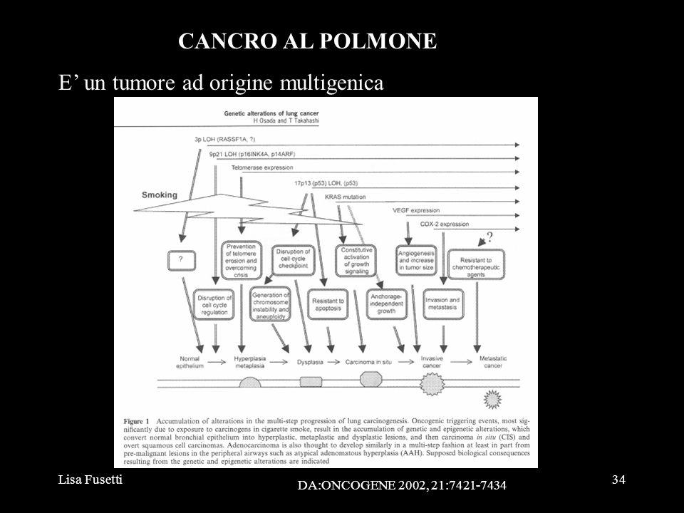 Lisa Fusetti34 CANCRO AL POLMONE E un tumore ad origine multigenica DA:ONCOGENE 2002, 21:7421-7434