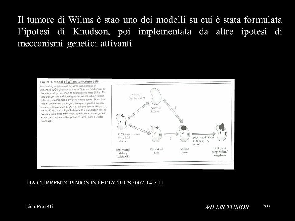 Lisa Fusetti39 WILMS TUMOR Il tumore di Wilms è stao uno dei modelli su cui è stata formulata lipotesi di Knudson, poi implementata da altre ipotesi d