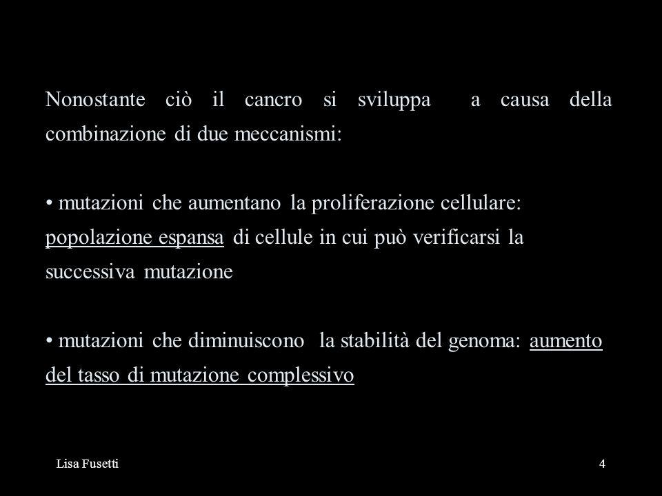 Lisa Fusetti35 Particolarmente interessanti sono i geni p53 e FHIT: entrambi presentano anomalie nel tumore al polmone strettamente correlate con lo sviliuppo delliperplasia Trascritti anomali di FHIT si riscontrano nel 80% dei casi di SCLC (Small Cell Lung Cancer) e 42% di NSCLC (Non- Small Cell Lung Cancer) FHIT è un target preferenziale di carcinogeni come il tabacco si pensa a causa di una regione fragile allinterno del gene stesso (FHIT=Fragile Histidine Triade) LUNG CANCER DA: EUR.J.CANCER 2001, 37 SUPPL:S63-73