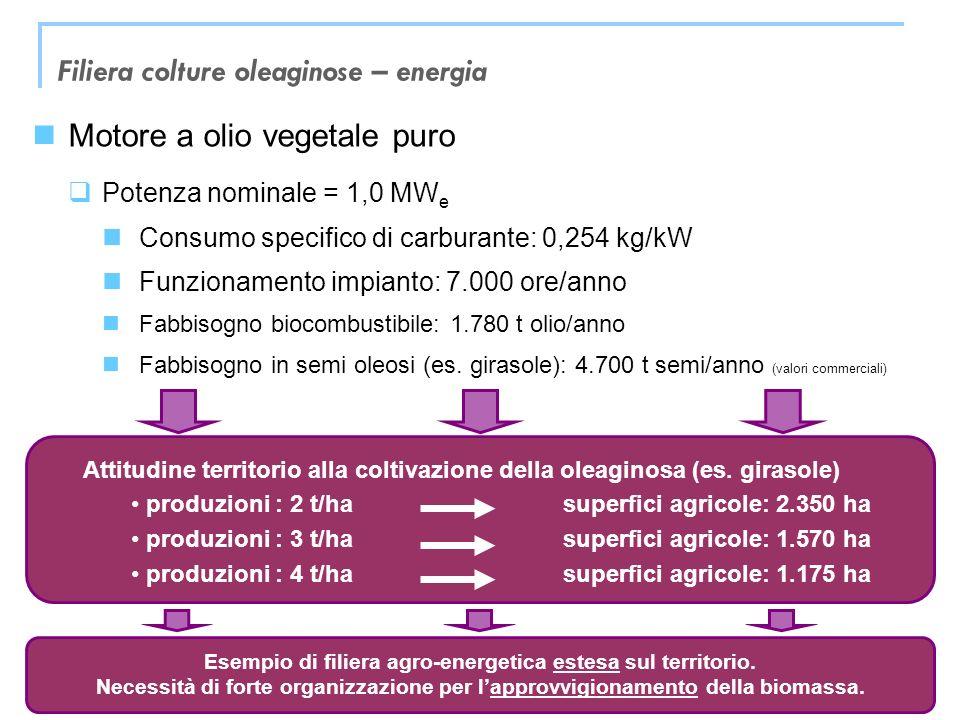 Trieste, 26 novembre 2010 Motore a olio vegetale puro Potenza nominale = 1,0 MW e Consumo specifico di carburante: 0,254 kg/kW Funzionamento impianto: