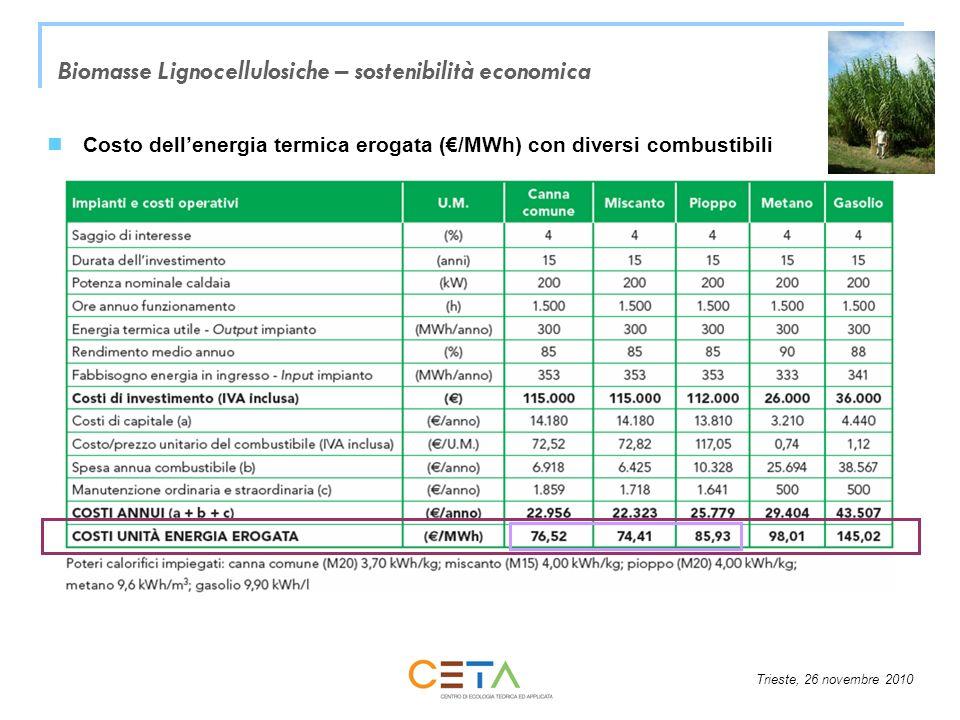Trieste, 26 novembre 2010 Biomasse Lignocellulosiche – sostenibilità economica Costo dellenergia termica erogata (/MWh) con diversi combustibili