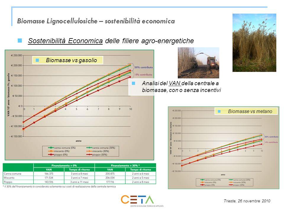 Trieste, 26 novembre 2010 Sostenibilità Economica delle filiere agro-energetiche Analisi del VAN della centrale a biomasse, con o senza incentivi Biom