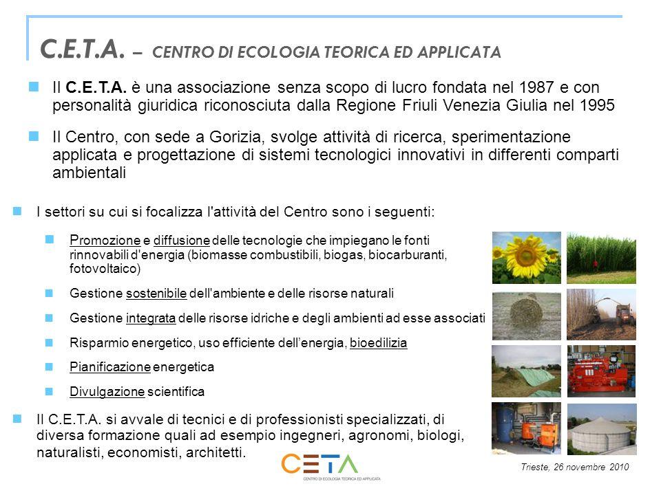 Trieste, 26 novembre 2010 CONVERSIONE ENERGETICA DELLE BIOMASSE VEGETALE Generazione di energia termica, elettrica, frigorifera, meccanica