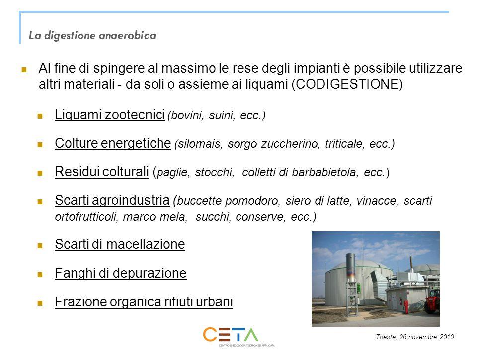 Trieste, 26 novembre 2010 Al fine di spingere al massimo le rese degli impianti è possibile utilizzare altri materiali - da soli o assieme ai liquami