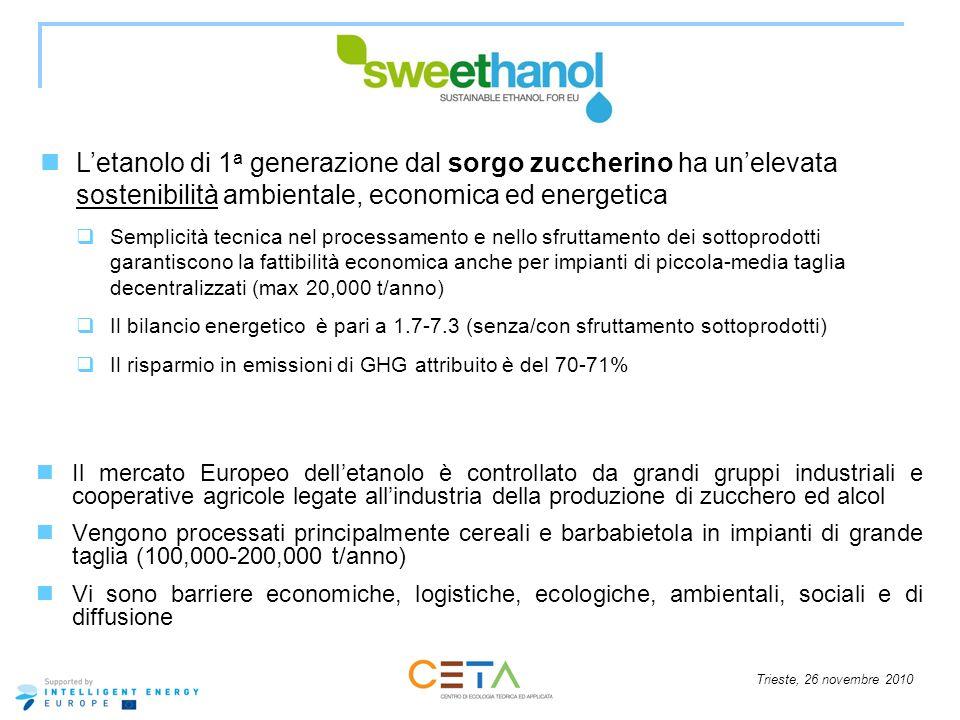 Trieste, 26 novembre 2010 Il mercato Europeo delletanolo è controllato da grandi gruppi industriali e cooperative agricole legate allindustria della p