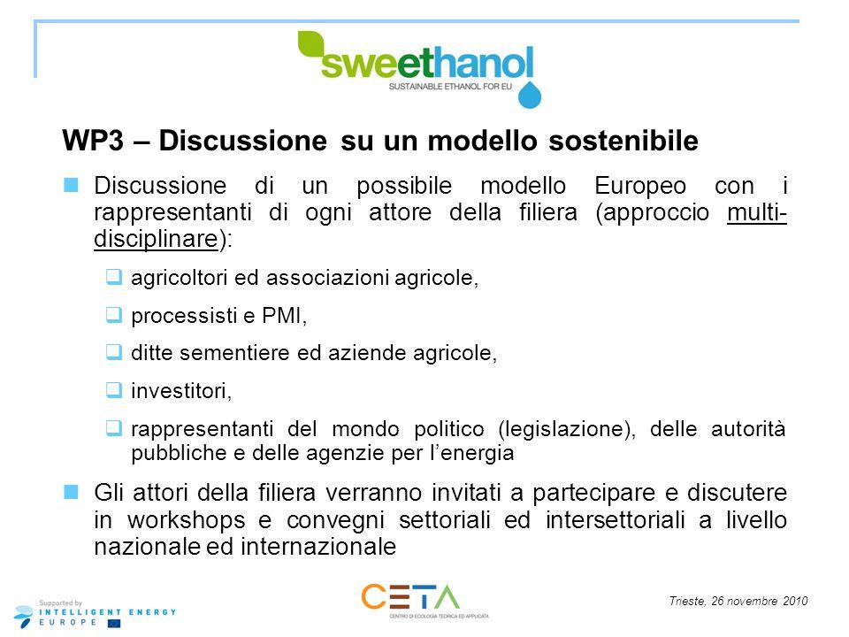 Trieste, 26 novembre 2010 WP3 – Discussione su un modello sostenibile Discussione di un possibile modello Europeo con i rappresentanti di ogni attore