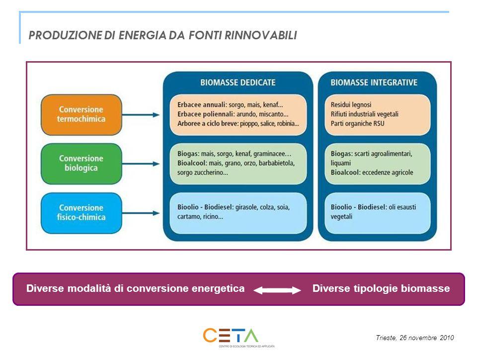 Trieste, 26 novembre 2010 PRODUZIONE DI ENERGIA DA FONTI RINNOVABILI Diverse modalità di conversione energeticaDiverse tipologie biomasse