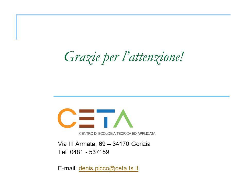 Grazie per lattenzione! Via III Armata, 69 – 34170 Gorizia Tel. 0481 - 537159 E-mail: denis.picco@ceta.ts.itdenis.picco@ceta.ts.it