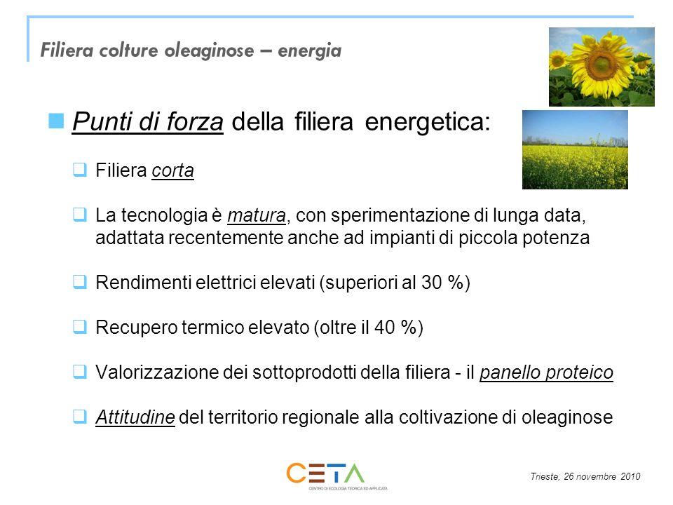 Trieste, 26 novembre 2010 Punti di forza della filiera energetica: Filiera corta La tecnologia è matura, con sperimentazione di lunga data, adattata r