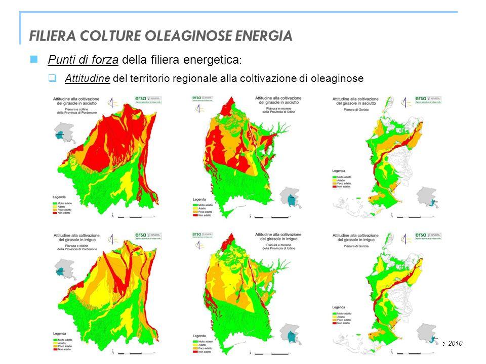 Trieste, 26 novembre 2010 Punti di forza della filiera energetica : Valorizzazione dellenergia elettrica: interessanti prospettive con il nuovo sistema di incentivazione della produzione di energia elettrica da fonti rinnovabili Tariffa onnicomprensiva = 0,28 /kWh o 0,18 /kWh Coefficiente di moltiplicazione CV = 1,8 o 1,3 Valorizzazione dellenergia termica: prezzo del gas metano e altre fonti fossili variabili (…in ascesa) potenziali applicazioni in agricoltura (serre, essiccazione, ecc.) interessanti prospettive per la trigenerazione (frigorie) Filiera colture oleaginose – energia