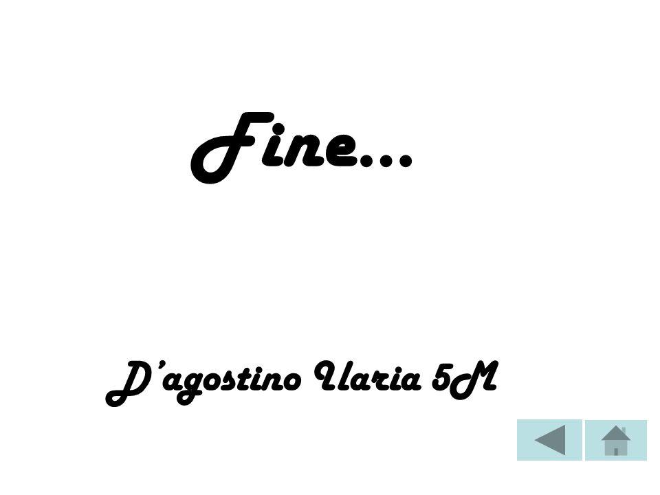 Fine… Dagostino Ilaria 5M