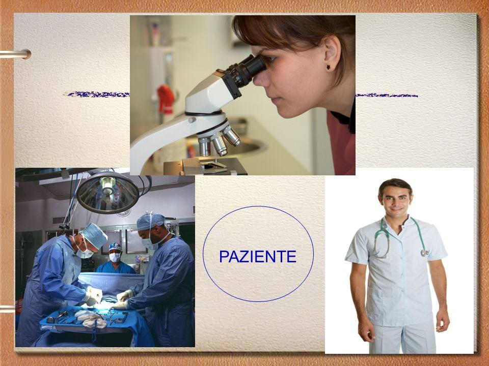 Collo vescicale Apice Base Sezioni parasagittali Apice CARCINOMA DELLA PROSTATA: Protocollo di campionamento
