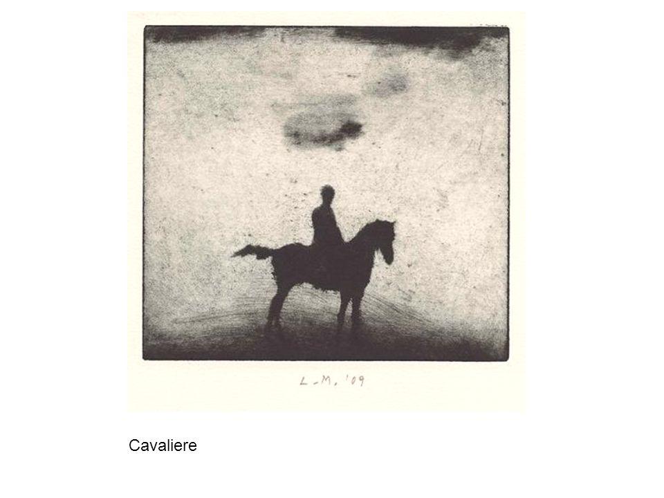 Un signore che possedeva un cavallo di rara eleganza...