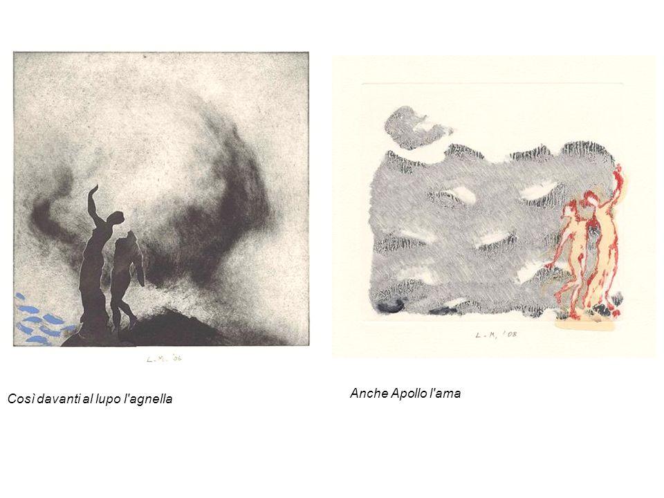 Così davanti al lupo l'agnella Anche Apollo l'ama
