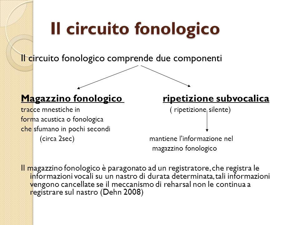 Il circuito fonologico Il circuito fonologico comprende due componenti Magazzino fonologico ripetizione subvocalica tracce mnestiche in ( ripetizione