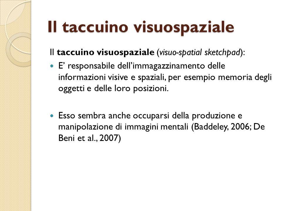 Il taccuino visuospaziale Il taccuino visuospaziale (visuo-spatial sketchpad): E responsabile dellimmagazzinamento delle informazioni visive e spazial