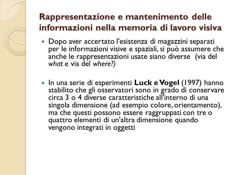 Rappresentazione e mantenimento delle informazioni nella memoria di lavoro visiva Dopo aver accertato l'esistenza di magazzini separati per le informa