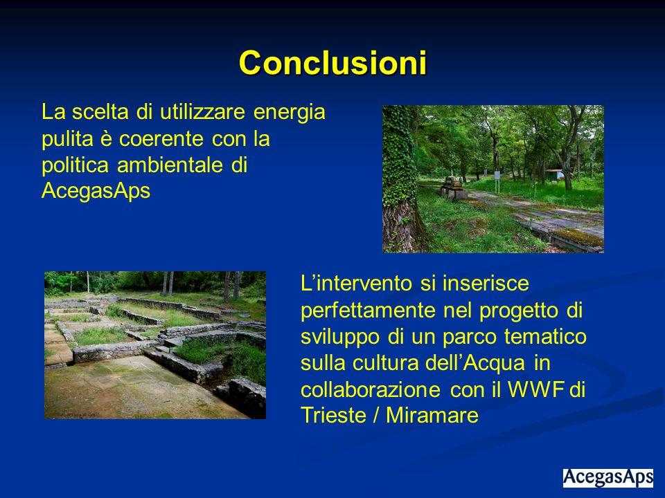 Conclusioni La scelta di utilizzare energia pulita è coerente con la politica ambientale di AcegasAps Lintervento si inserisce perfettamente nel proge