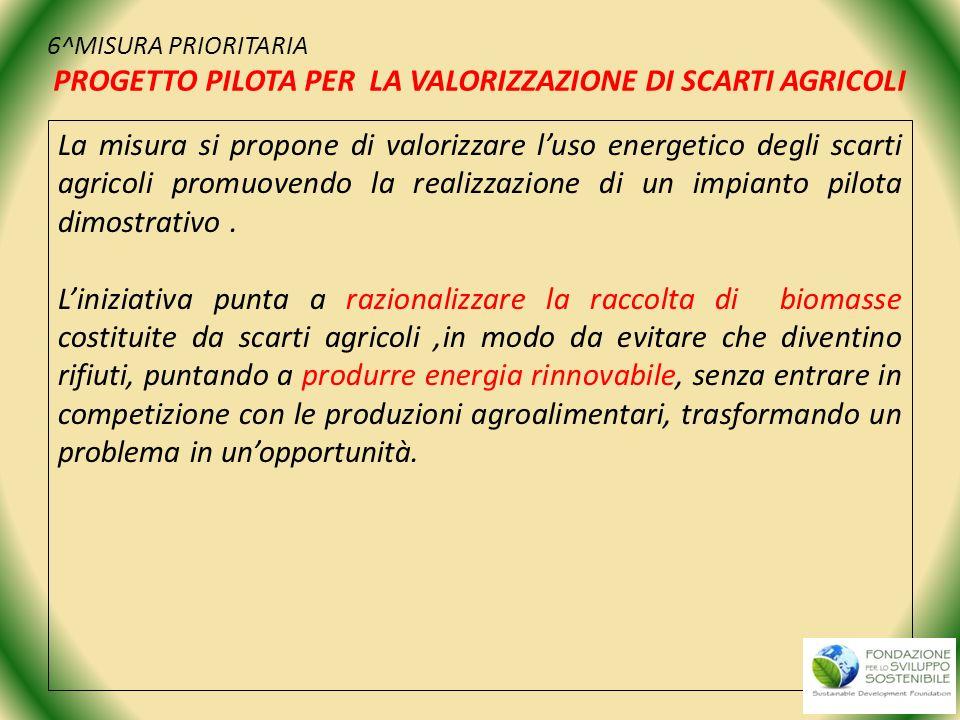 6^MISURA PRIORITARIA PROGETTO PILOTA PER LA VALORIZZAZIONE DI SCARTI AGRICOLI La misura si propone di valorizzare luso energetico degli scarti agricol