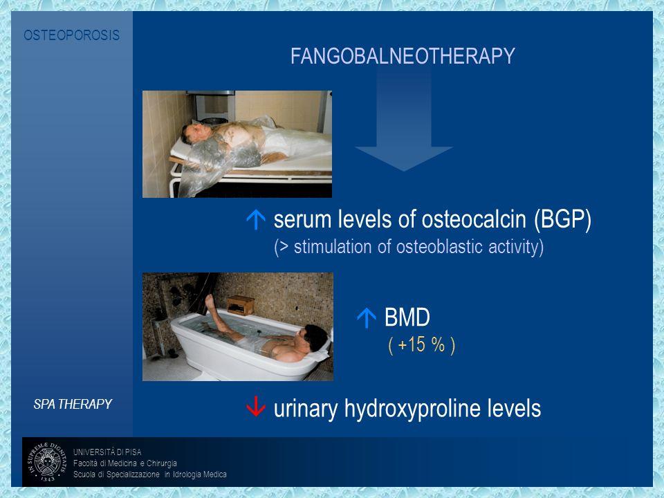 OSTEOPOROSIS SPA THERAPY BMD ( +15 % ) urinary hydroxyproline levels UNIVERSITÀ DI PISA Facoltà di Medicina e Chirurgia Scuola di Specializzazione in