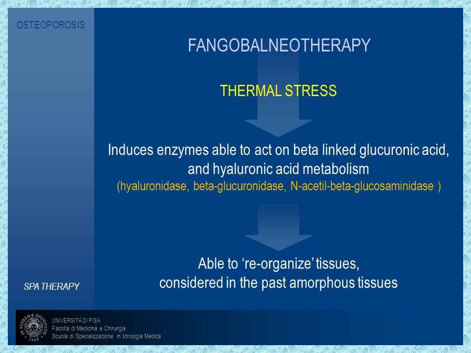 OSTEOPOROSIS SPA THERAPY FANGOBALNEOTHERAPY THERMAL STRESS Induces enzymes able to act on beta linked glucuronic acid, and hyaluronic acid metabolism