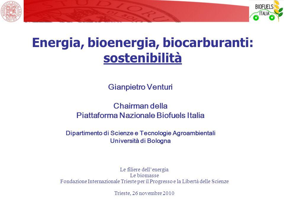 Gianpietro Venturi Chairman della Piattaforma Nazionale Biofuels Italia Dipartimento di Scienze e Tecnologie Agroambientali Università di Bologna Ener