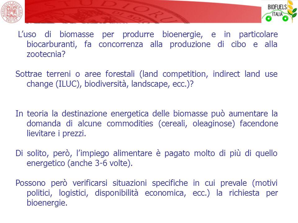 Luso di biomasse per produrre bioenergie, e in particolare biocarburanti, fa concorrenza alla produzione di cibo e alla zootecnia? Sottrae terreni o a