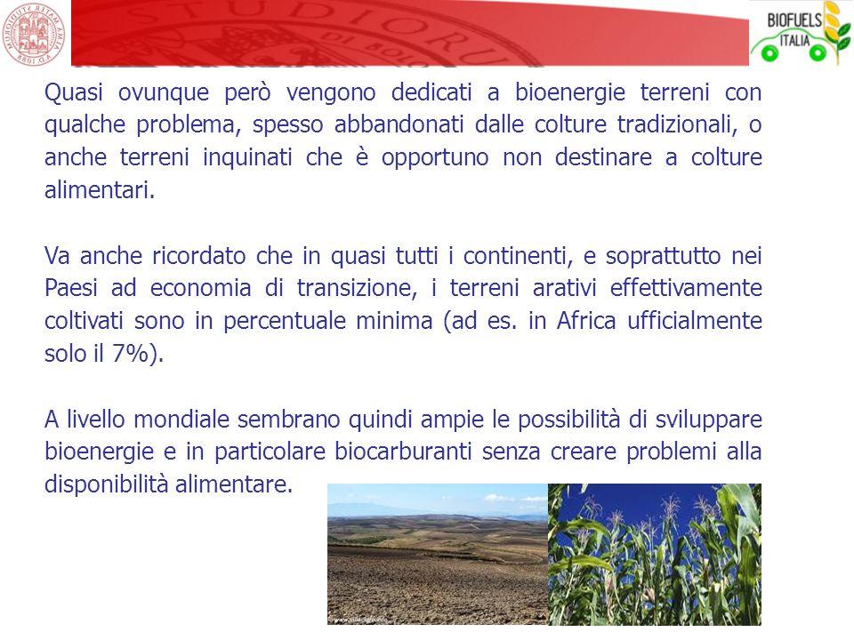 Quasi ovunque però vengono dedicati a bioenergie terreni con qualche problema, spesso abbandonati dalle colture tradizionali, o anche terreni inquinat