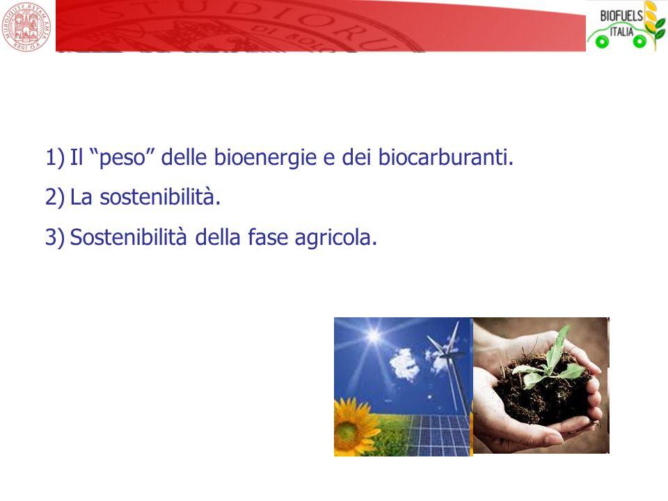 1)Il peso delle bioenergie e dei biocarburanti. 2)La sostenibilità. 3)Sostenibilità della fase agricola.