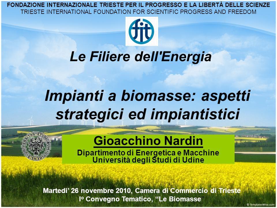 Gioacchino Nardin Dipartimento di Energetica e Macchine Università degli Studi di Udine Le Filiere dell'Energia Martedi 26 novembre 2010, Camera di Co