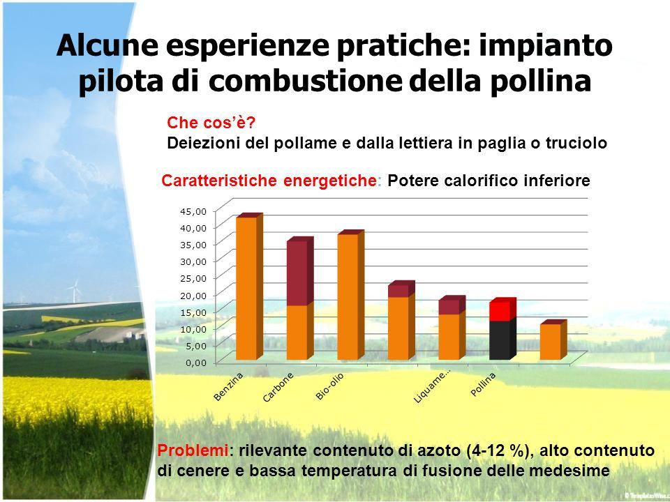 Alcune esperienze pratiche: impianto pilota di combustione della pollina Problemi: rilevante contenuto di azoto (4-12 %), alto contenuto di cenere e b