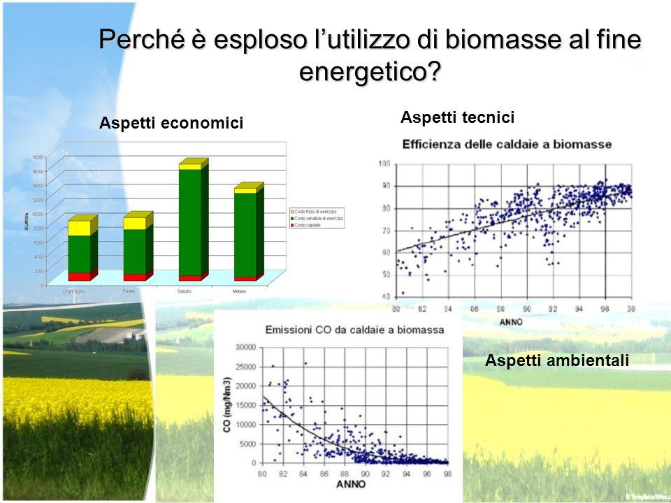 Perché è esploso lutilizzo di biomasse al fine energetico? Aspetti tecnici Aspetti ambientali Aspetti economici