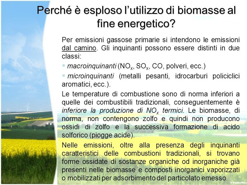 Per emissioni gassose primarie si intendono le emissioni dal camino. Gli inquinanti possono essere distinti in due classi: macroinquinanti (NO x, SO x