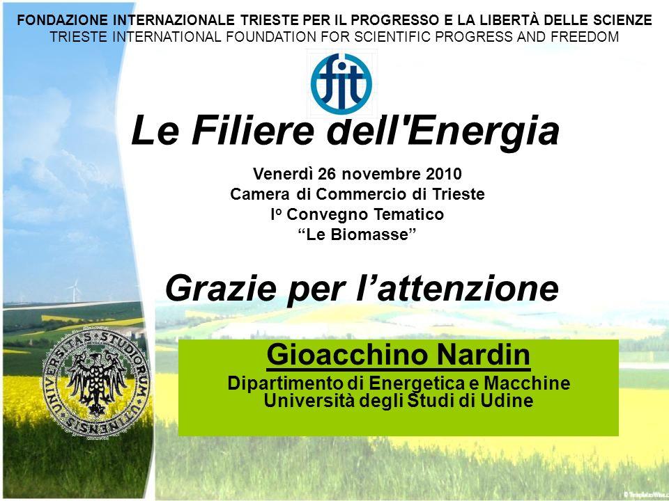 Gioacchino Nardin Dipartimento di Energetica e Macchine Università degli Studi di Udine Le Filiere dell'Energia Venerdì 26 novembre 2010 Camera di Com