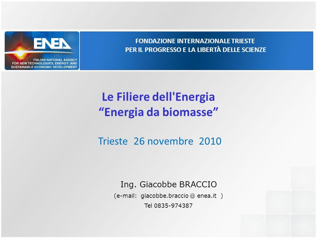 FONDAZIONE INTERNAZIONALE TRIESTE PER IL PROGRESSO E LA LIBERTÀ DELLE SCIENZE Trieste 26 novembre 2010 Le Filiere dell'Energia Energia da biomasse Ing