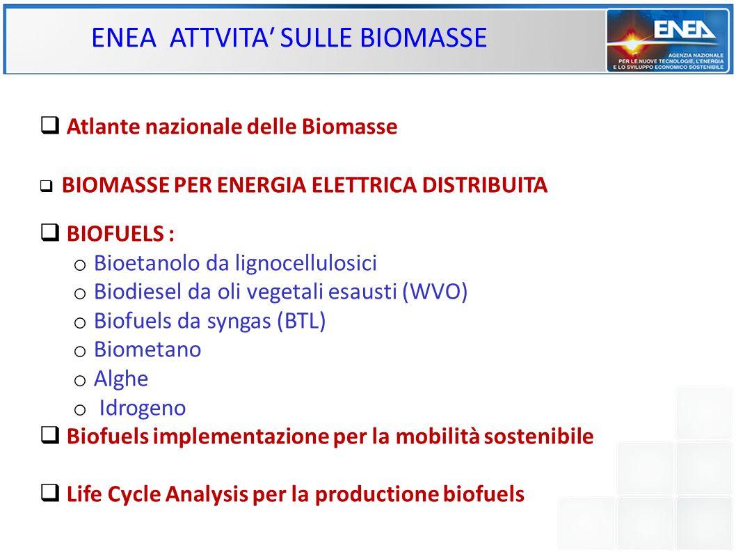 ENEA ATTVITA SULLE BIOMASSE Atlante nazionale delle Biomasse BIOMASSE PER ENERGIA ELETTRICA DISTRIBUITA BIOFUELS : o Bioetanolo da lignocellulosici o