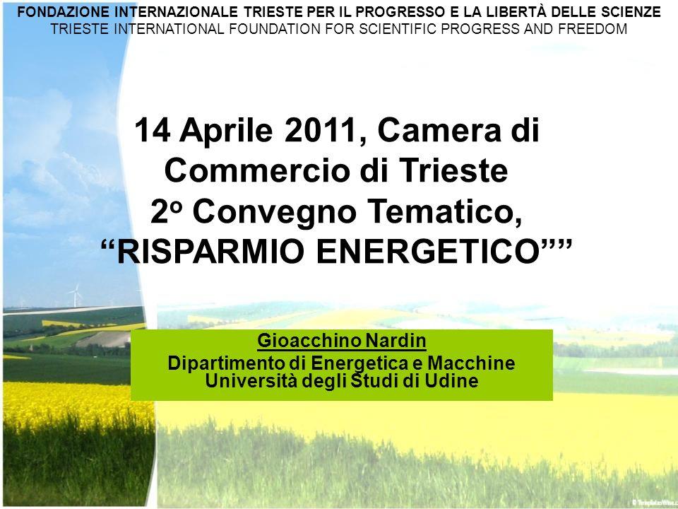 Gioacchino Nardin Dipartimento di Energetica e Macchine Università degli Studi di Udine 14 Aprile 2011, Camera di Commercio di Trieste 2 o Convegno Te