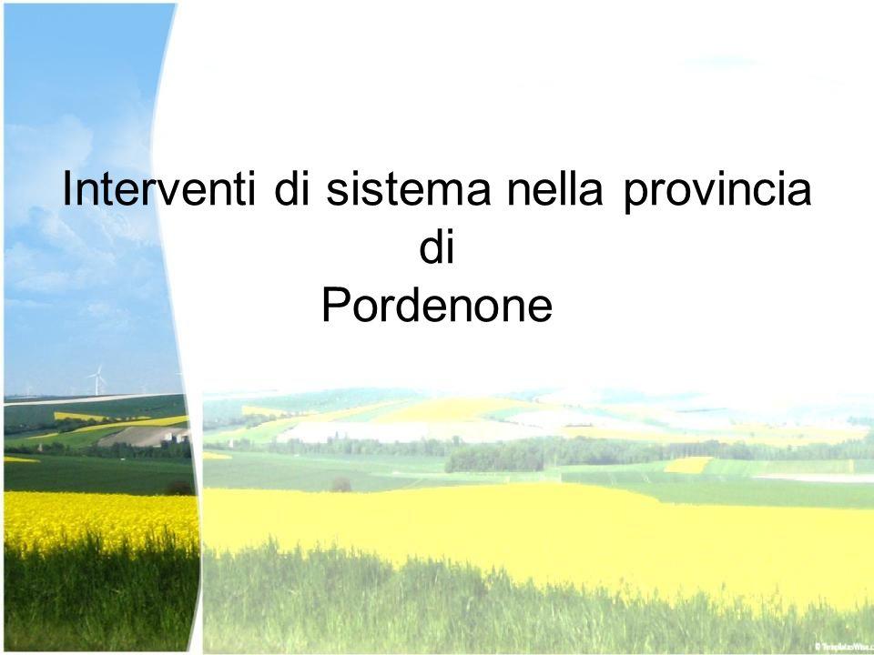 Interventi di sistema nella provincia di Pordenone