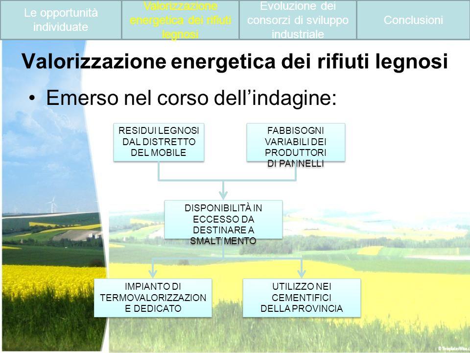 Valorizzazione energetica dei rifiuti legnosi Emerso nel corso dellindagine: RESIDUI LEGNOSI DAL DISTRETTO DEL MOBILE RESIDUI LEGNOSI DAL DISTRETTO DE