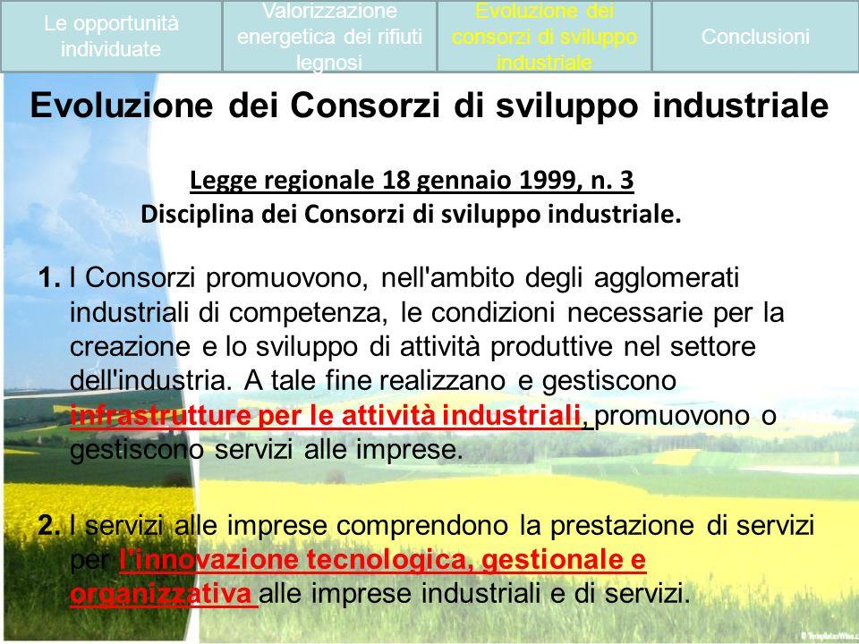 Evoluzione dei Consorzi di sviluppo industriale 1. I Consorzi promuovono, nell'ambito degli agglomerati industriali di competenza, le condizioni neces