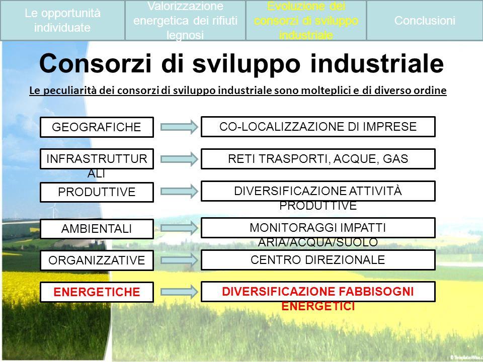 Consorzi di sviluppo industriale Le peculiarità dei consorzi di sviluppo industriale sono molteplici e di diverso ordine GEOGRAFICHE INFRASTRUTTUR ALI