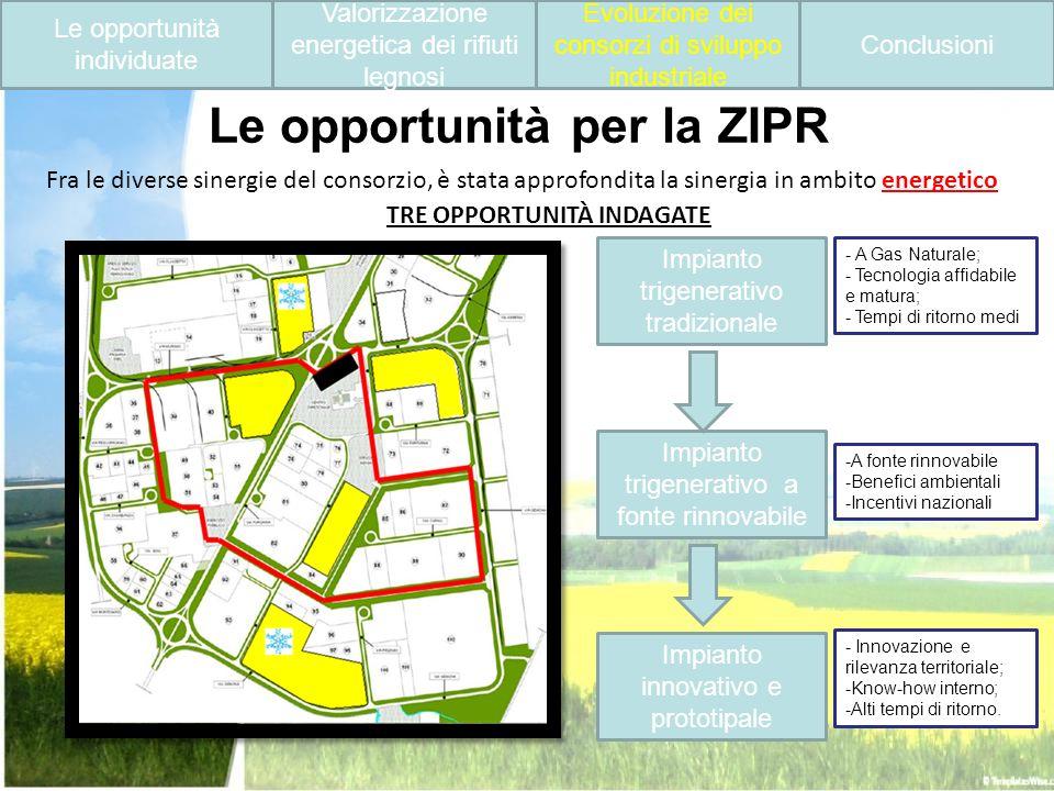 Le opportunità per la ZIPR Impianto trigenerativo tradizionale Fra le diverse sinergie del consorzio, è stata approfondita la sinergia in ambito energ