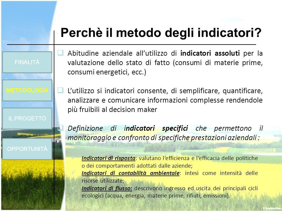 Perchè il metodo degli indicatori? Abitudine aziendale allutilizzo di indicatori assoluti per la valutazione dello stato di fatto (consumi di materie