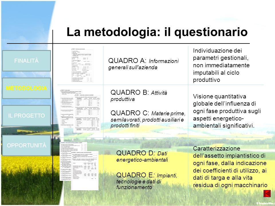 FINALITÀ METODOLOGIA OPPORTUNITÀ La metodologia: il questionario IL PROGETTO QUADRO A: Informazioni generali sull'azienda QUADRO D: Dati energetico-am