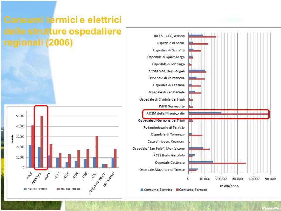 Variazioni percentuali delle varie voci di spesa (2003-2007) Fonte: elaborazione UNIUD dati CSC e Ministero della Sanità Incremento percentuale per la spesa energetica ben superiore alle altre voci del Conto Economico Regionale!