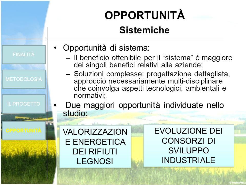 OPPORTUNITÀ Sistemiche FINALITÀ METODOLOGIA OPPORTUNITÀ IL PROGETTO Opportunità di sistema: –Il beneficio ottenibile per il sistema è maggiore dei sin