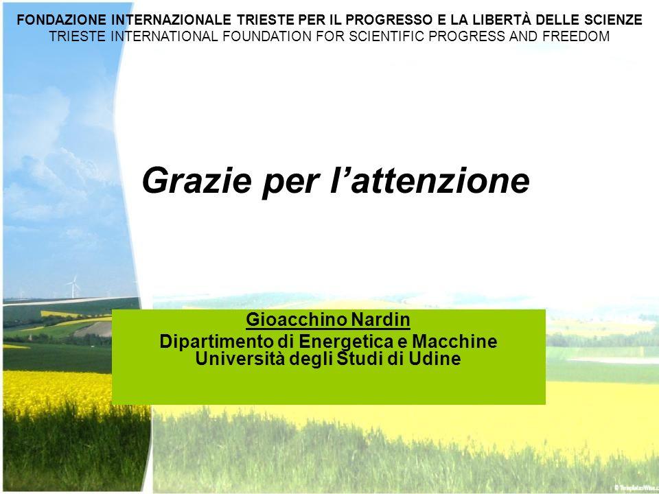 Gioacchino Nardin Dipartimento di Energetica e Macchine Università degli Studi di Udine FONDAZIONE INTERNAZIONALE TRIESTE PER IL PROGRESSO E LA LIBERT