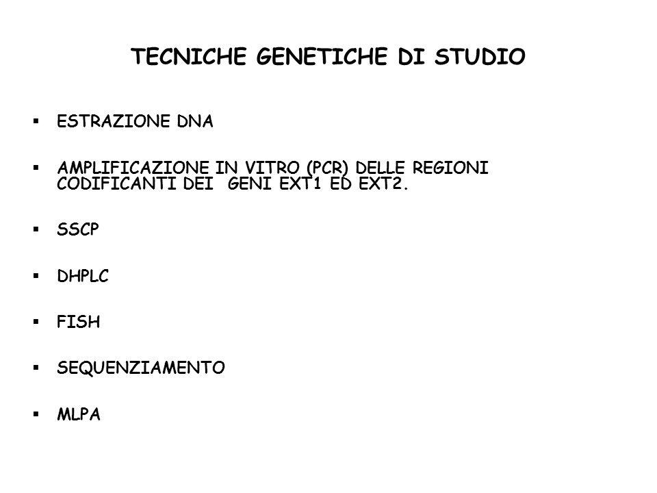 TECNICHE GENETICHE DI STUDIO ESTRAZIONE DNA AMPLIFICAZIONE IN VITRO (PCR) DELLE REGIONI CODIFICANTI DEI GENI EXT1 ED EXT2.