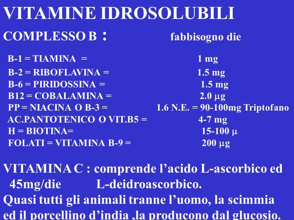 VITAMINE NELLA DIETA - LIPOSOLUBILI = K ( k-1 O FILLOCHINONI E K-2 MENACHINONI) - RISCHIO = <0.2 ng/ml - FABBISOGNO GIORNALIER0 :50-70 g - FONTI ALIME
