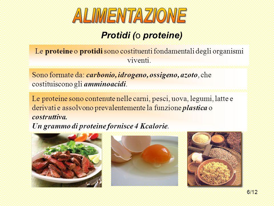 6/12 Le proteine sono contenute nelle carni, pesci, uova, legumi, latte e derivati e assolvono prevalentemente la funzione plastica o costruttiva. Un